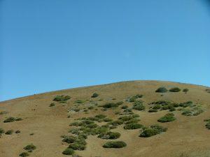 Landschaft 3