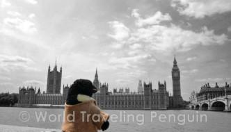Pinguin trifft Meisterdetektiv – ein Gastartikel vom World Traveling Penguin