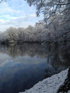 Volkspark Jungfernheide im Winter