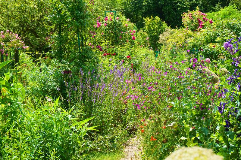 Blumenmeer im Garten von Monet