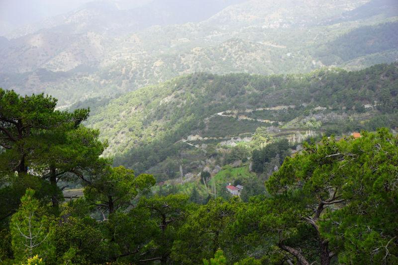 Aussicht im Troodos-Gebirge auf Zypern