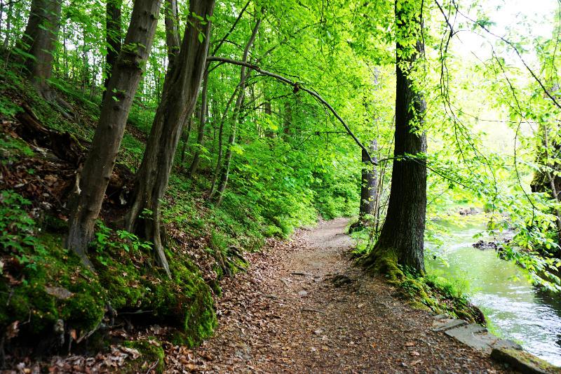 Planeten-Wanderweg in Radeberg