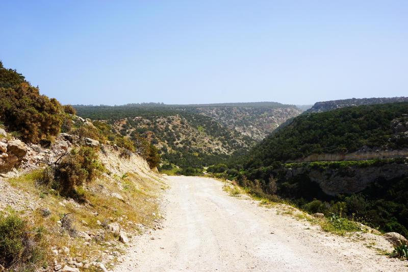 Weg zu Avakas-Schlucht