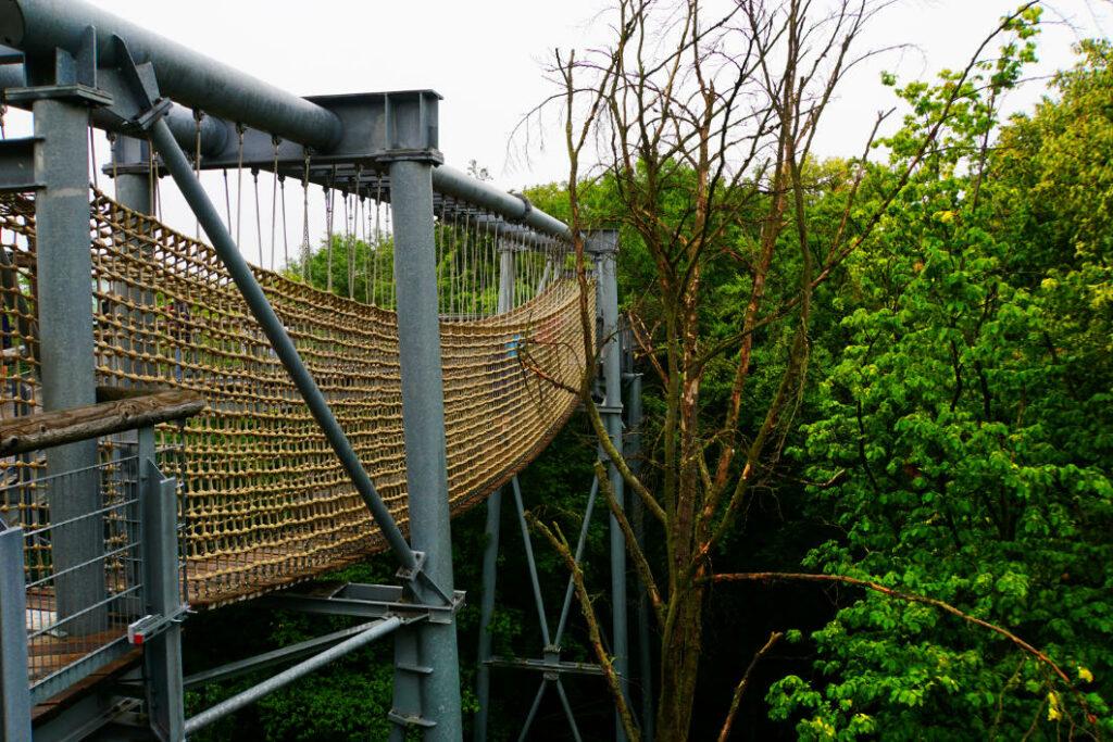 Hängebrücke im Baumkronenpfad National Park Hainich