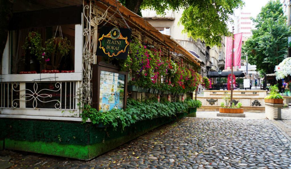 Belgrad entdecken