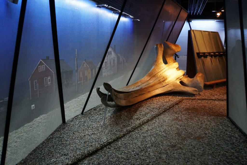 Alaska - Klimahaus Bremerhaven