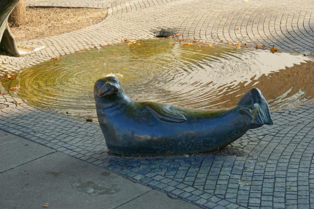 Seehund Bremerhaven