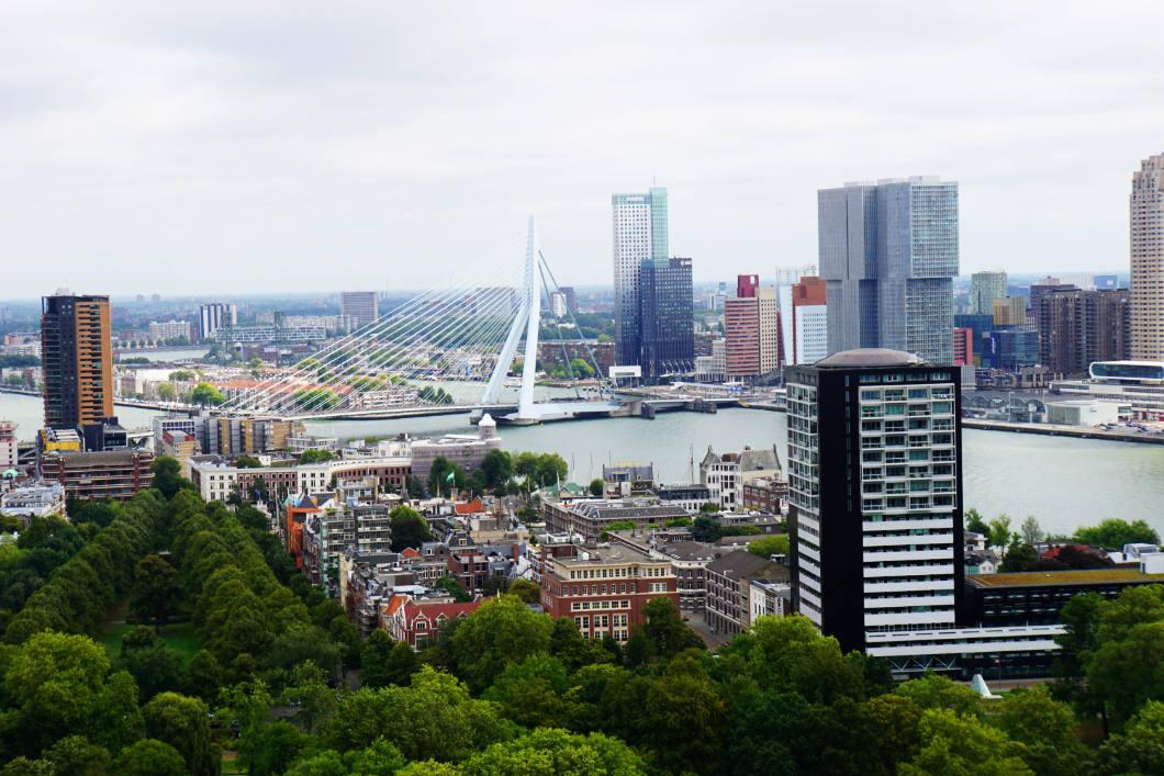Rotterdam besichtigen