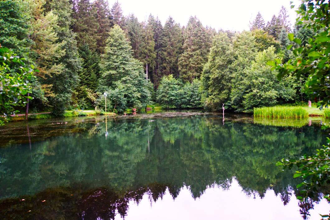 Kinzigsee im Zauberwald von Loßburg