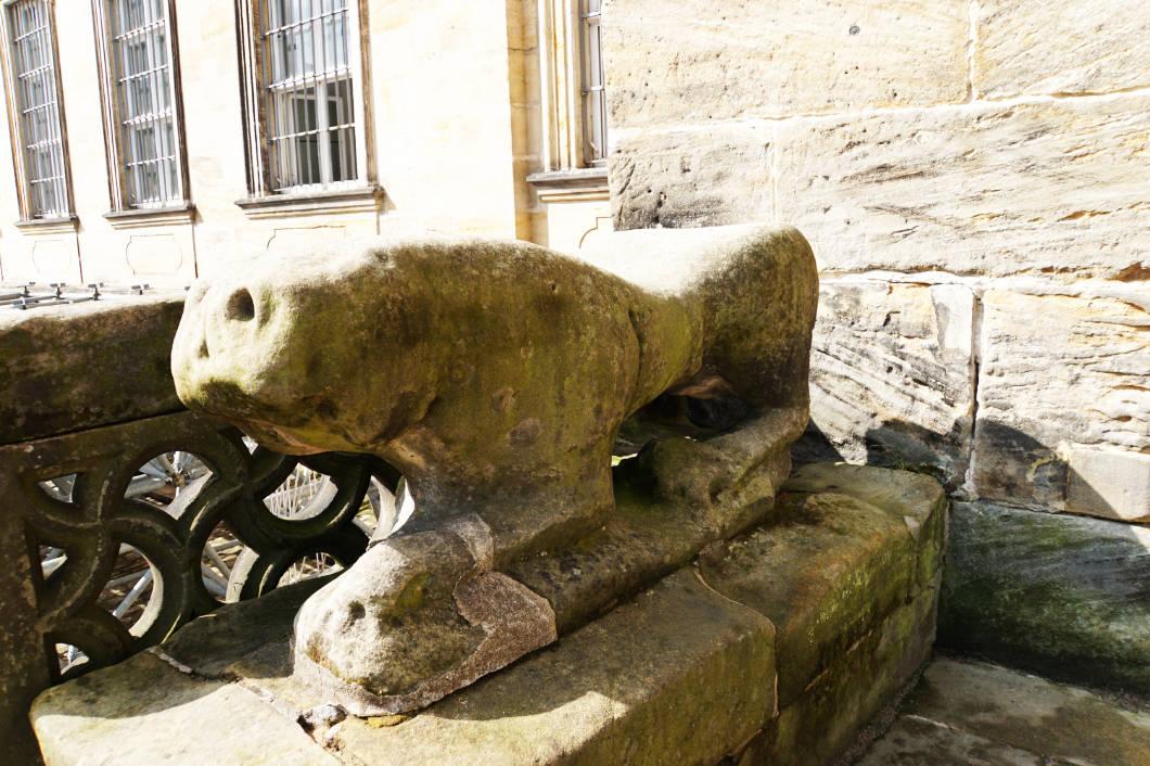 Domkröten von Bamberg