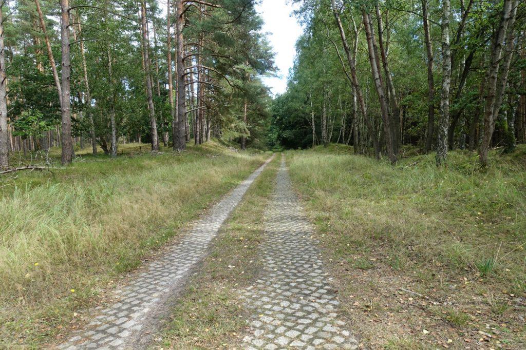 Radweg in Vorpommern