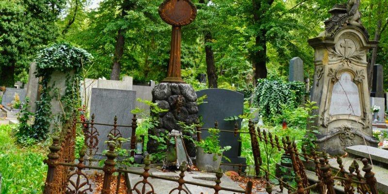 Grab auf dem Peager Friedhof