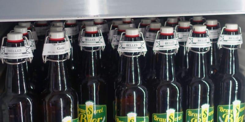 Bier von Friedrich's Brausiges