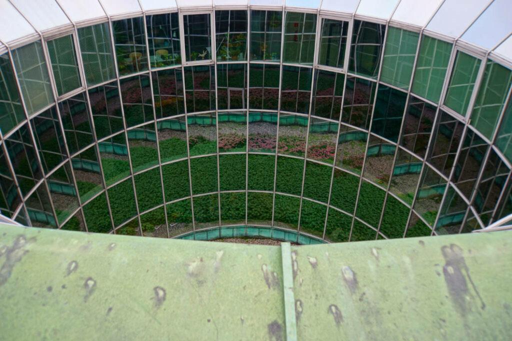 Spiegelungen in den Fenstern der Universitätsbibilothek