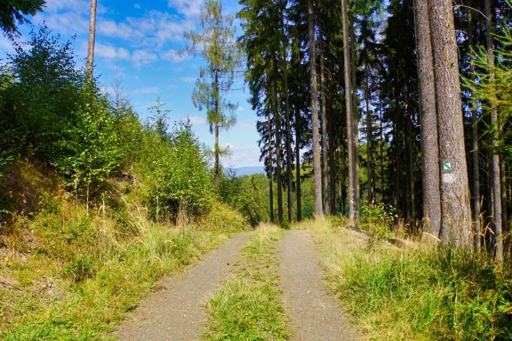 Wanderung zum Hans-Heiling-Felsen