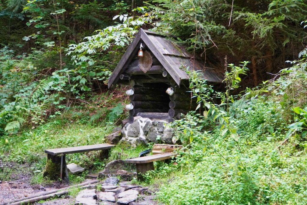 Wasserquelle im Wald bei Karlsbad