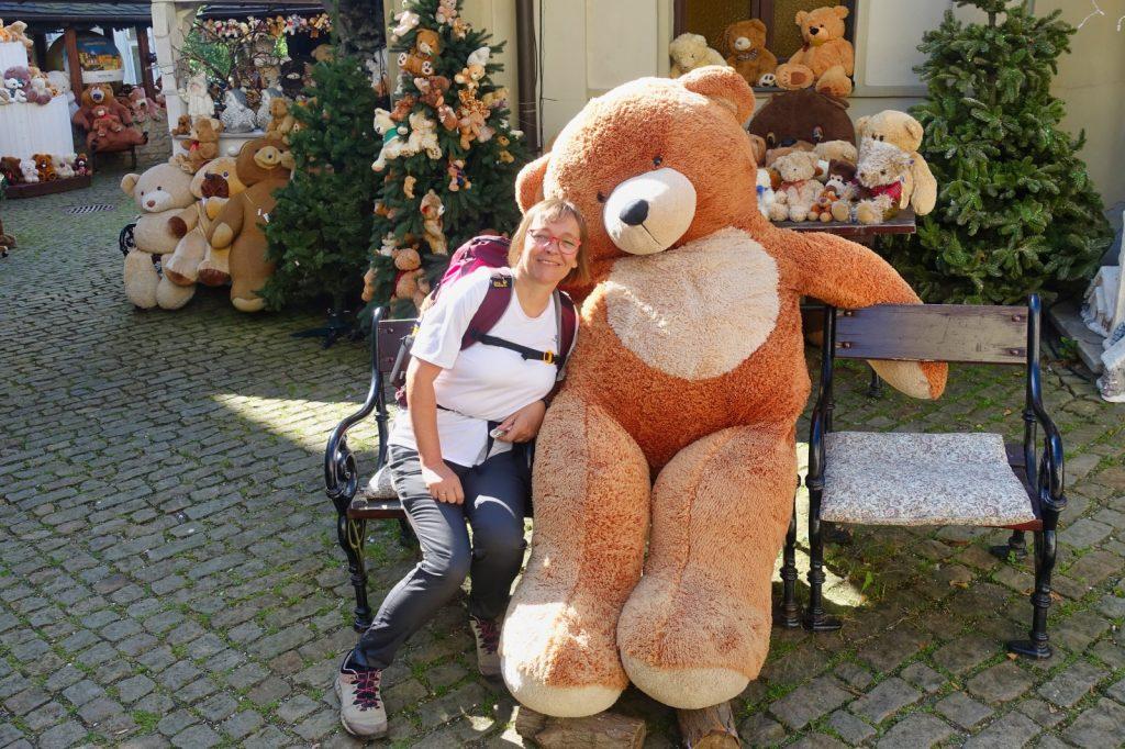 mein Freund der Teddy