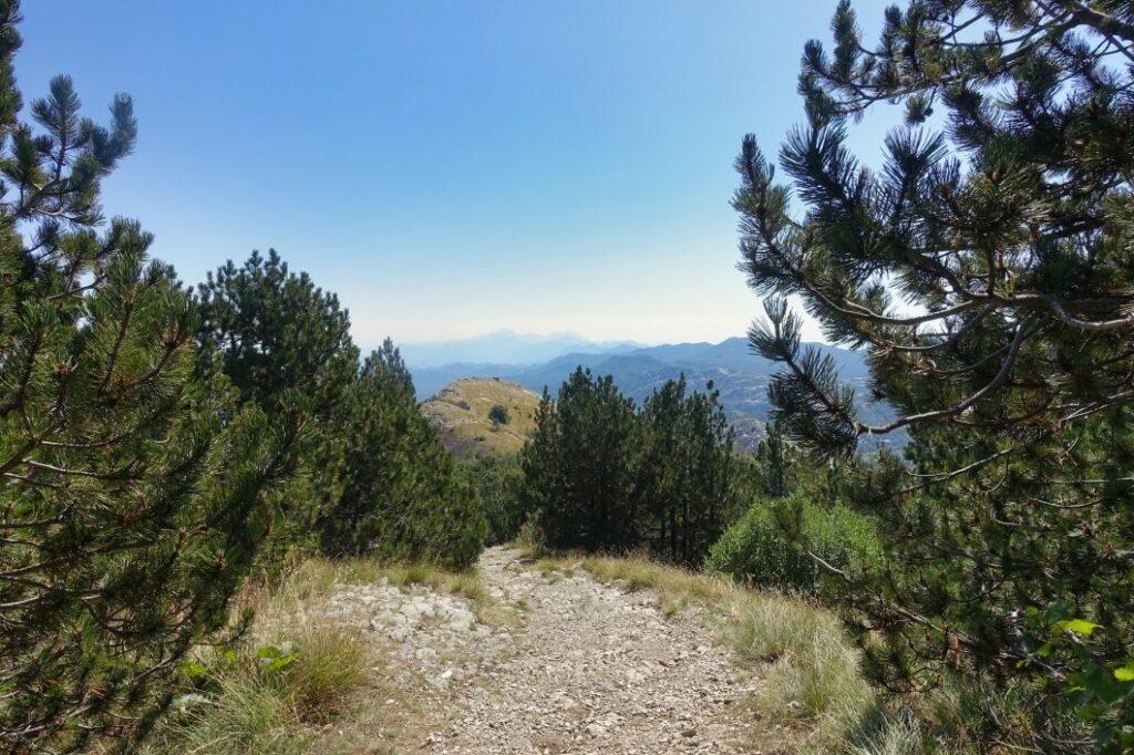 Wandern in Montenegro, Lovćen Nationalpark
