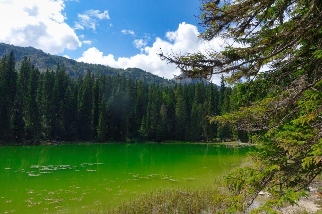 zweite Wanderung in Montenegro