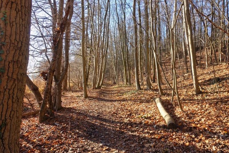 Wanderweg entlang der Havel