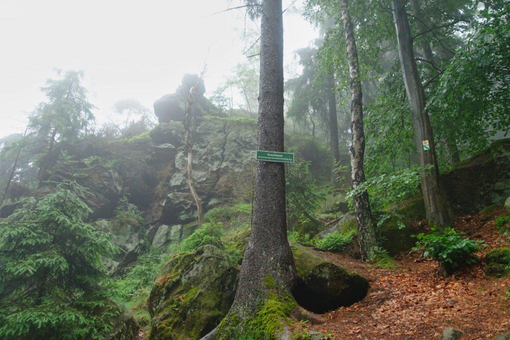 Muschelsaal im Zittauer Gebirge im Nebel