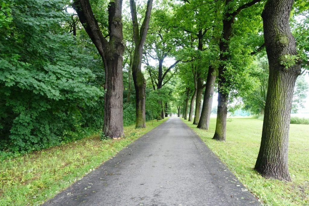 Wanderweg Via Sacra