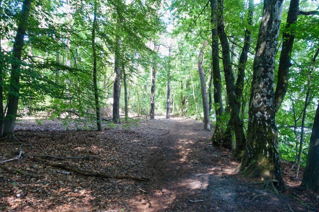 Wanderweg in Schmöckwitz