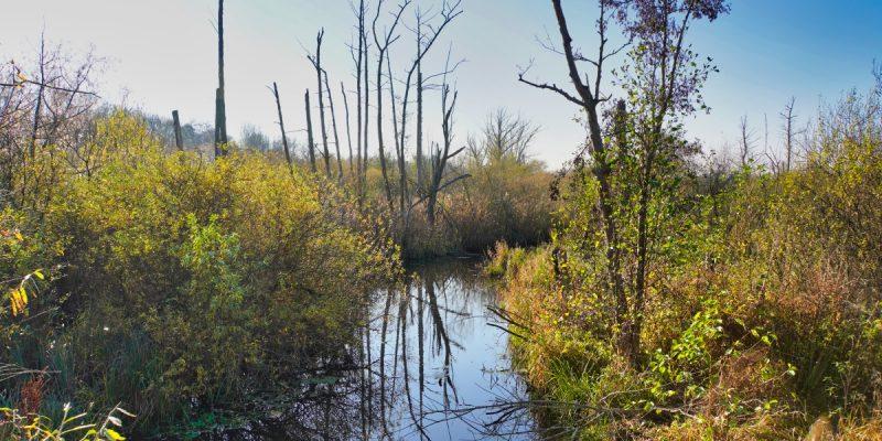Wanderung im Tegler Fließtal